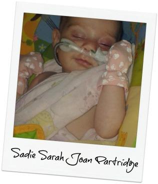 Sadie4blog